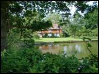 BarcombeEastSussex - The pond