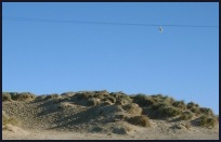 Broomhill Sussex - The sand dunes